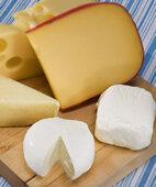 Milch, Joghurt und Käse liefern wertvolles Kalzium. Auf Rohmilchprodukte sollten Schwangere jedoch verzichten