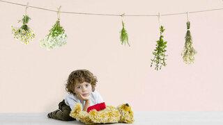 Junge unter Heilpflanzen