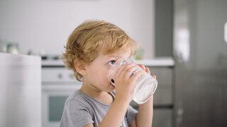 Milch für Kinder Alles Gute kommt aus der Kuh Kleinkind Küche