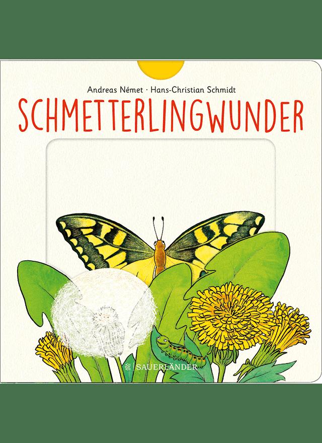 SCHMETTERLINGSWUNDER