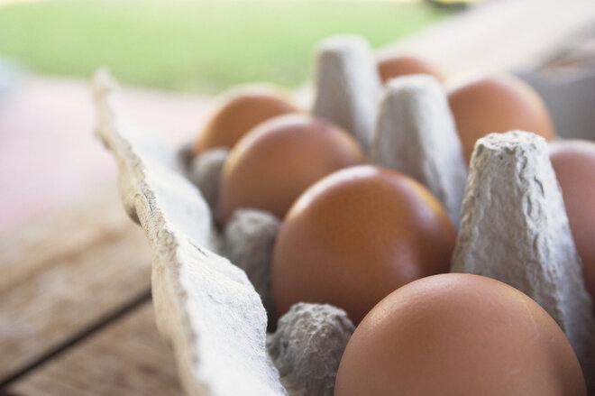 Eier müssen durchgegart werden