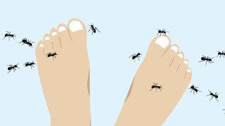 Kribbeln in den Füßen