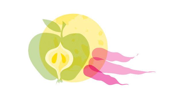 Illustration Apfel