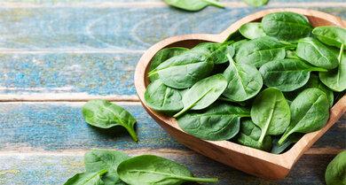 Junger Spinat: Gut geeignet für grüne Smoothies