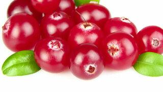 Preiselbeere Cranberry