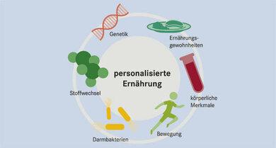 Neben den Genen sind viele weitere Faktoren ausschlaggebend für eine richtige Ernährung