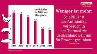 Weniger Antibiotika