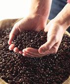 Kaffee weckt die Lebensgeister