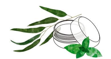 Eukalyptus vielseitig gegen Erkältungen einsetzen