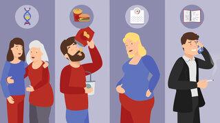 Welche Faktoren können zu Typ 2 Diabetes führen?