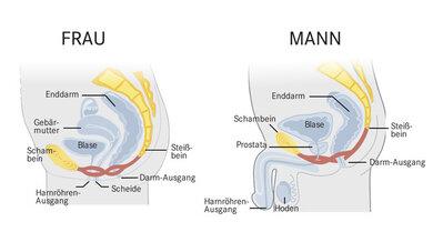 Das Bild zeigt links: Unterkörper der Frau von der Seite. Das Bild zeigt rechts: Unterkörper des Mannes von der Seite.