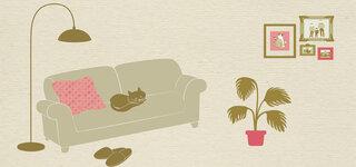 Wohnpsychologie Psychologie Wohnen Sofa Bilder Pflanze Katzen