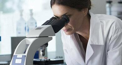 Unentbehrlich für die Haarwuchsforschung: Feinheiten unter dem Mikroskop