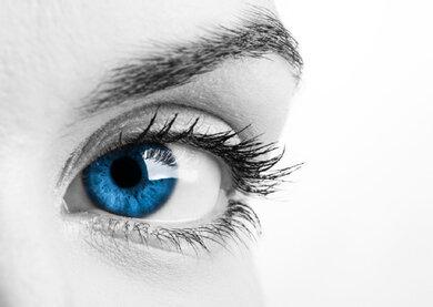 Die Regenbogenhaut (hier blau) umrandet die Pupille und bestimmt die Augenfarbe