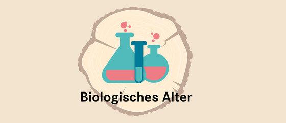 Infografik Baumscheibe Biologisches Alter