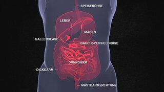 Hämorrhoiden und unterschied analvenenthrombose Was ist