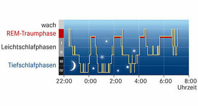 Die Schlafstadien:  Leichtschlaf und Tiefschlaf wechseln einander ab. Dazwischen liegen, erst kürzer, dann länger, die REM-Phasen (rote Linien)
