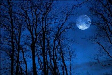 Strittig: Einfluss des Mondzyklus auf den Schlaf
