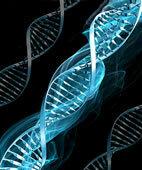 Ionisierende Strahlung kann die DNA schädigen