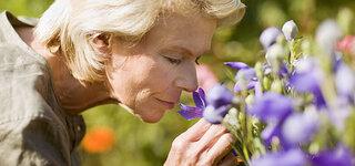 Geruchssinn lässt im Alter nach