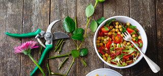Kichererbsen-Salat