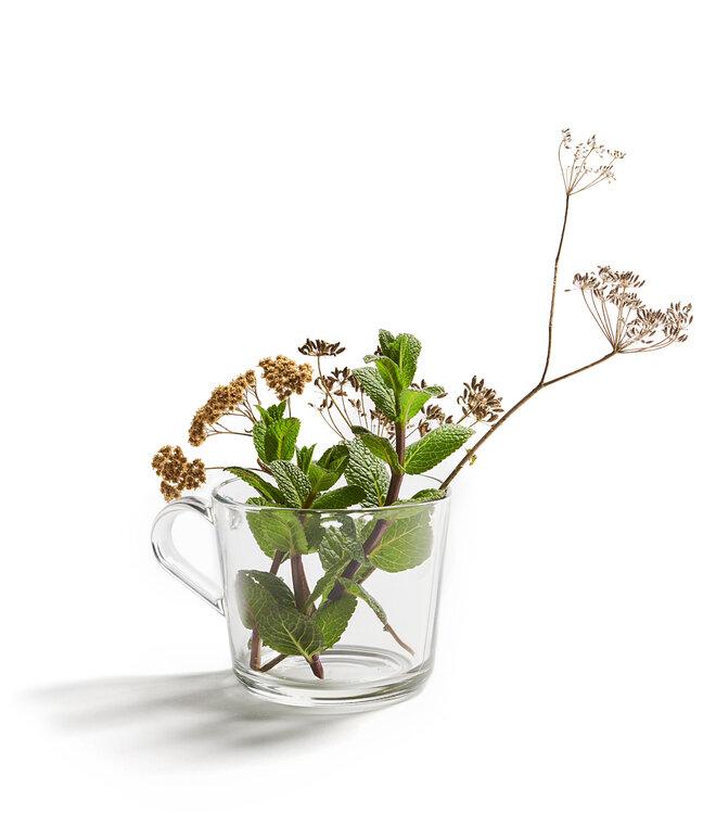 Kräutermix im Glas
