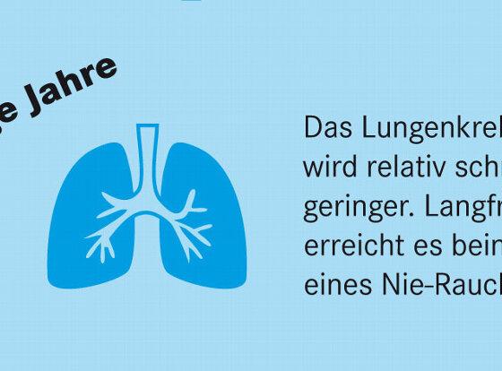 Infografik Rauchen Raucherstopp