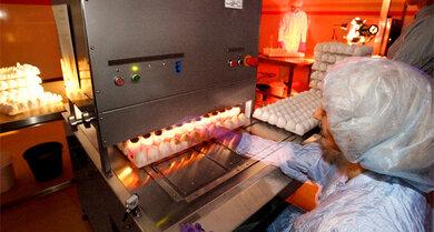 Prüfung: 72 Stunden nach Beimpfung werden alle Eier durchleuchtet. Aussortiert werden jene, die nicht die Qualitätskriterien erfüllen