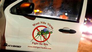 Zika Mücke West Nil Fieber Deutschland Europa