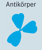 Alzheimer-Eiweiße attackieren: Ein Antikörper gegen Beta-Amyloid-Klumpen zeigte vergangenen Herbst einen kleinen positiven Effekt auf Testpersonen. In den USA prüft die Behörde die Zulassung.