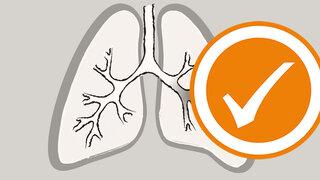 Lunge, akute Bronchitis