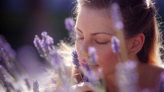 Corona Riechtest Frau Riechen an Lavendel glücklich