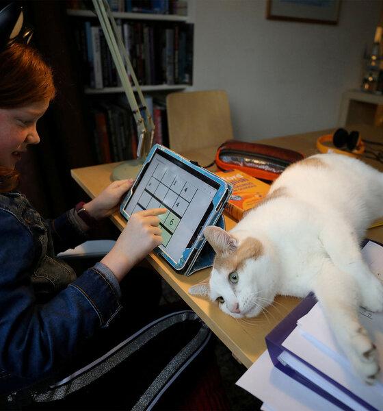 Mädchen lernt Zuhause am Tablet mit Katze auf dem Schreibtisch
