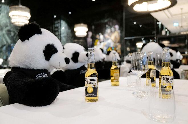 """Spielzeugpandabären in einem Restaurant mit """"Corona"""" Bier"""