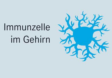 Immunzelle im Gehirn
