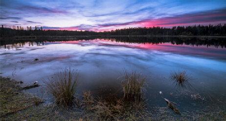 Schoenramer Moor bei Sonnenuntergang